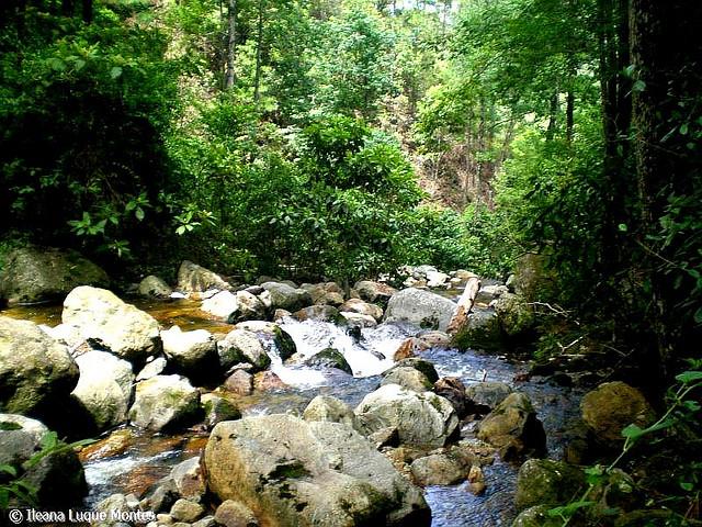 parque nacional celaque