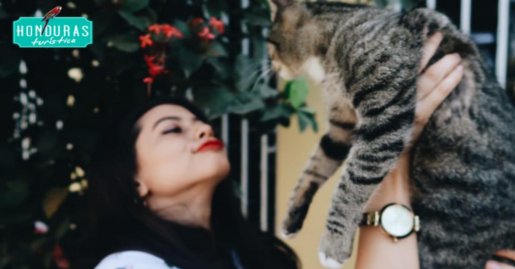 RackiMinchy : me gustan muchos los gatos tengo varios y a todos los amo